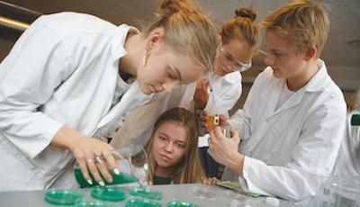 Biotek elever
